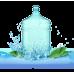 Живая вода — сила чистой воды